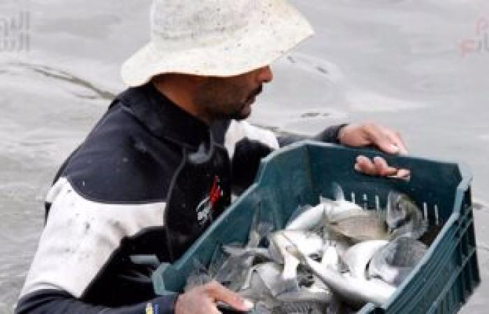 نقيب البيطريين: الاستزراع السمكى بالقناة يضعنا على خريطة العالم لتصدير الأسماك