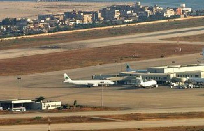 طيور النورس.. خطر يهدد مطار بيروت