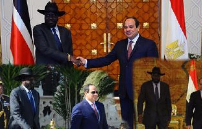 السيسي يؤكد اعتزام مصر إرسال شحنة مساعدات طبية لجنوب السودان