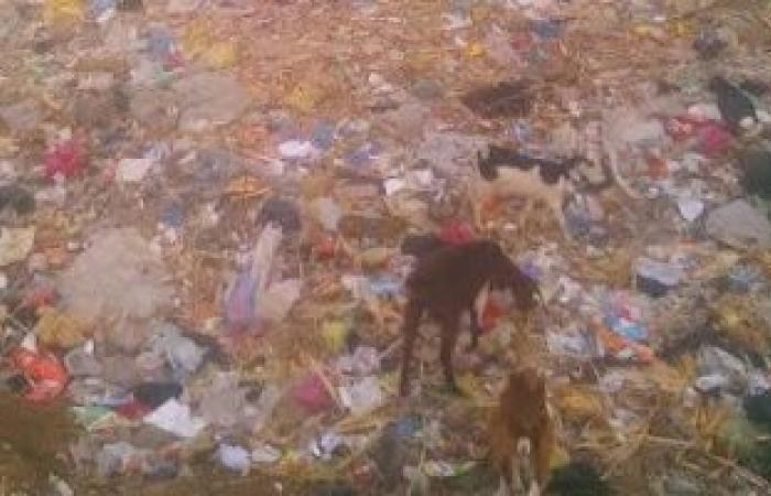 رئيس مدينة المحلة يشكل لجنة لتسلم مصنع تدوير القمامة