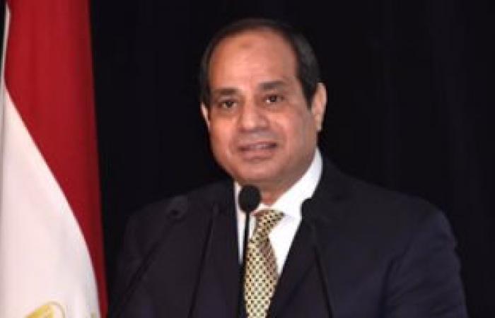 أعضاء البرلمان الأيرلندى يؤكدون للسيسى تقديرهم لاستعادة الاستقرار بمصر