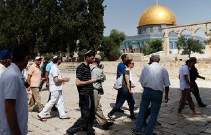 """حملة مقاومة الاستيطان: ضم إسرائيل لـ""""معاليه أدوميم"""" يؤدى لإبتلاع القدس"""