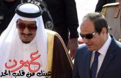 موقع أمريكي يفجر مفاجأة بشأن الأزمة بين مصر والسعودية