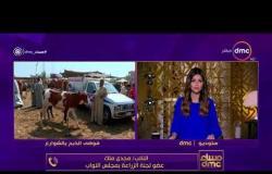 مساءdmc  - نواب يطالبون بتغليظ العقوبات للتصدي لفوضى الذبح بالشوارع في عيد الأضحى