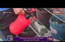 مساء dmc - أهالي قرية بالمنيا يزرعون أسطح المنازل للمساعدة في تحسين البيئة