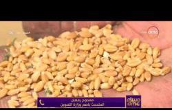 مساء dmc -مداخلة نقيب الفلاحين والمتحدث بإسم وزارة التموين وتعليقهم على بدء توريد القمح من المزارعين