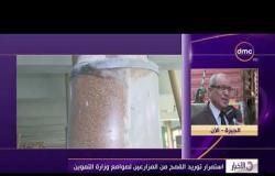 الأخبار - استمرار توريد القمح من المزارعين لصوامع وزارة التموين