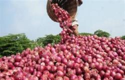 """أول إجراء من """"الزراعة"""" بشأن حظر السعودية استيراد البصل المصري"""
