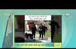 """8 الصبح - رامي رضوان يعرض فيديو ( هل توافق على بيع كلبك مقابل 100 ألف دولار ؟ """""""