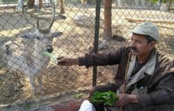 غضب بين حراس «حيوانات الجيزة» بسبب تصرفات الزوار غير اللائقة