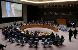 مجلس الأمن الدولي يرفض إضافة مسألة قانون اللغة في أوكرانيا إلى جدول الأعمال