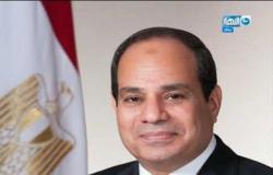 الرئيس السيسي يستقبل نائب رئيس غرفة التجارة الأمريكية