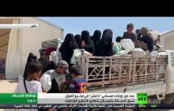 زوجات مسلحي داعش بمخيم الهول يتمسكن بتعاليم التنظيم