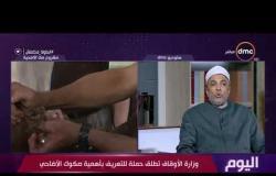اليوم - الشيخ جابر طايع يتحدث عن مشروع صكوك الأضحية وأن له مردود إيجابي علي البيئة في مصر