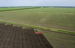 مسؤول مصري: لم نرصد أي تأثير للحادث النووي على وارداتنا الزراعية من روسيا