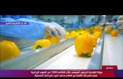 جولة تفقدية للرئيس السيسي خلال افتتاحه 1300 من الصوب الزراعية من قطاع محمد نجيب