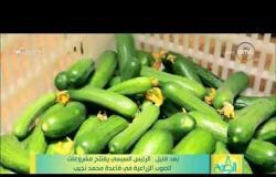 8 الصبح نجاحات الرياضة المصرية في الفترة الآخيرة .. انجازات منتخبات اليد والاسكواش