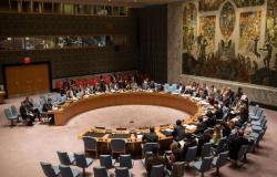 """مجلس الأمن يدعو لاستئناف مفاوضات دارفور بعد تشكيل """"السيادي السوداني"""""""
