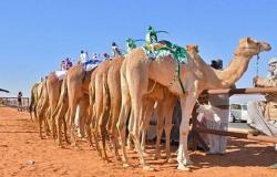 سفير الإمارات في السعودية: نجاح مهرجان ولي العهد هو نجاح لبلادنا