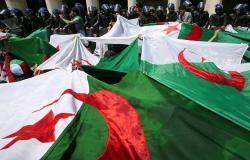 وزيرة الثقافة الجزائرية المستقيلة تستعد لتولي منصب رسمي جديد
