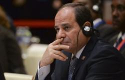 """خلال لقائه السيسي... وزير خارجية فرنسا يتحدث عن """"الحجم الضخم للمشاريع المصرية"""""""