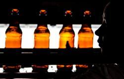 خطة قطرية لتوفير المشروبات الكحولية لمشجعي المونديال