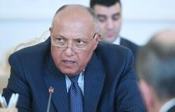 """رئيس """"سوريا الديمقراطية"""" يكشف كواليس لقاء وزير الخارجية المصري"""