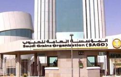 تفاصيل استراتيجية المؤسسة العامة للحبوب السعودية (مستند)