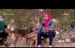 مساء dmc - محظية عبد المهيمن.. 15 عام من رعاية الحيوانات المشردة