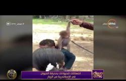 مساء dmc - انتهاكات للحيوانات بحديقة الحيوان في الإسكندرية من الزوار