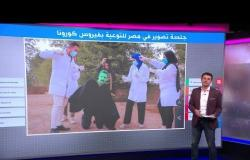 """""""فيروس كورونا بشنب"""" في جلسة تصوير صعيدية بمصر"""