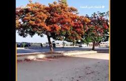 أول أيام العيد.. بدء حظر التجوال وهدوء في حركة المرور بكورنيش حلوان