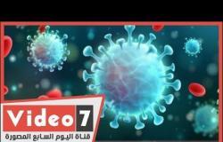 بالورقة والقلم.. ذروة إصابات فيروس كورونا فى مصر خلال أسبوعين