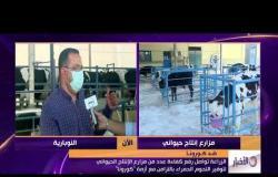 الأخبار - الزراعة تواصل رفع كفاءة عدد من مزارع الإنتاج الحيواني لتوفير اللحوم الحمراء