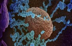 3 اصابات جديدة بفيروس كورونا في الأردن