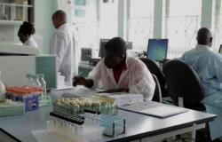 """إصابة 24 ألف شخص بـ""""كورونا"""" من العاملين في الصحة بجنوب إفريقيا"""