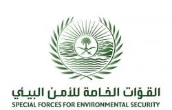 """""""الأمن البيئي"""": اتخاذ الإجراءات النظامية بحق كل من تثبت علاقته بمخالفة """"صيد الطيور"""""""