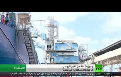 وصول شحنة قمح روسي إلى ميناء الإسكندرية