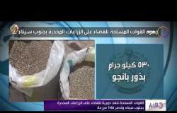 الأخبار - القوات المسلحة تنفذ دورية للقضاء على الزراعات المخدرة بجنوب سيناء وتدمر 146 مزرعة