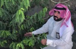 شاهد.. محافظ فيفاء يتفقَّد ميدانيًّا مشاريع زراعة البُن
