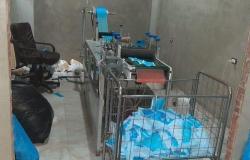 ضبط مصنع غير مرخص لتصنيع الكمامات بالإسكندرية- (صور)