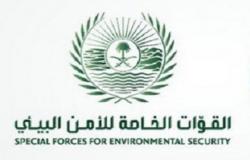 قوات الأمن البيئي تحذر من قطع الأشجار وبيع الحطب المحلي أو نقله