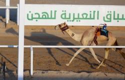 """""""بلشه"""" تحقق المركز الأول في خامس أيام منافسات مهرجان الهجن بالنعيرية"""