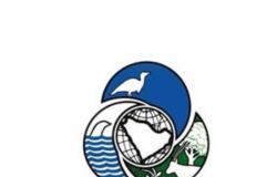 """""""الحياة الفطرية"""": تجهيز دراسة عن """"الصيد المستدام"""" مطلع العام المقبل"""