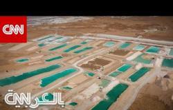 واحة سيوة.. وجهة سياحية مخبأة في صحراء مصر