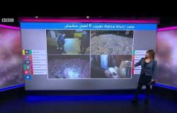 محاولة تهريب 6 أطنان من الحشيش بميناء دمياط في مصر قادمة من سوريا