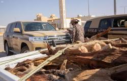 """""""الأمن البيئي"""" تضبط 16 طنًّا من الحطب المحلي المعدّ للبيع في الرياض"""