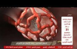 من مصر | الجهاز المناعي.. حصن الإنسان من الأمراض.. وكيف يواجه فيروس كورونا في حالة الإصابة
