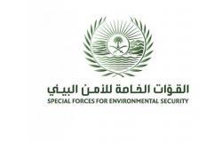 قوات الأمن البيئي تضبط 54 طن حطب محلي معدّ للبيع في الرياض