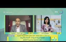 """8 الصبح - د. محمد توفيق """"طبيب بيطري"""": الكلاب البلدي لها مزايا لا توجد في السلالات الأجنبية"""
